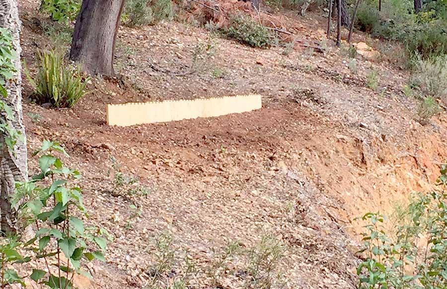 Naturaleza desprotegida, marzo-noviembre, 2015 proceso