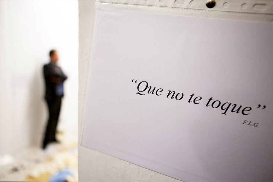 Performance n. 5: Que no te toque. F.L.G., 2011